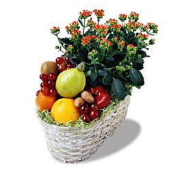 Fruit Basket with a Blooming Plant
