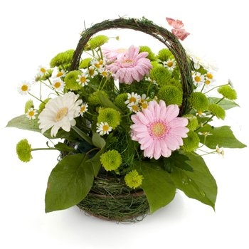 Pastel Pick me Up - Flower-Baskets on www.flowerstoukraine.com